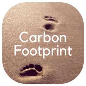 "footprint in the sand. Text overlay saying ""Carbon Footprint"""